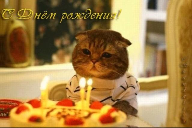 поздравления картинки +с днем рождения года