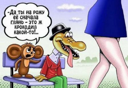 анекдоты свежие смешные читать бесплатно