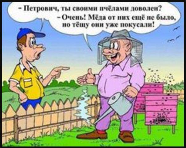 анекдоты свежие смешные бесплатно 67