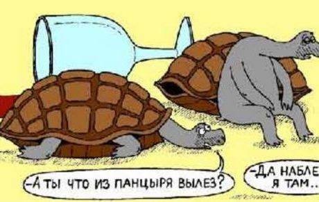 АНЕКДОТИКИ ЮМОР ШУТКИ