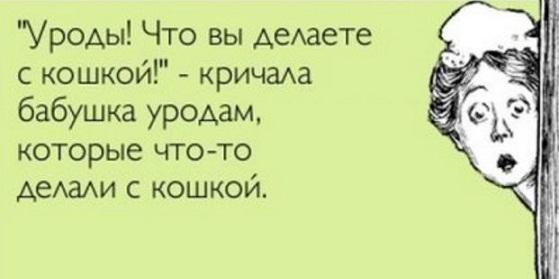 АНЕКДОТОВ МНОГО КОРОТКИХ