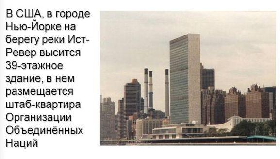 организация объединенных наций относится международным организациям
