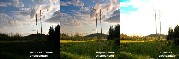НИКОН Д 3100 НАСТРОИТЬ ФОТОАППАРАТ