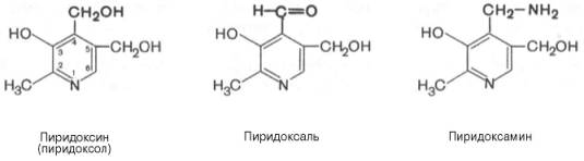 витамин б6 инструкция