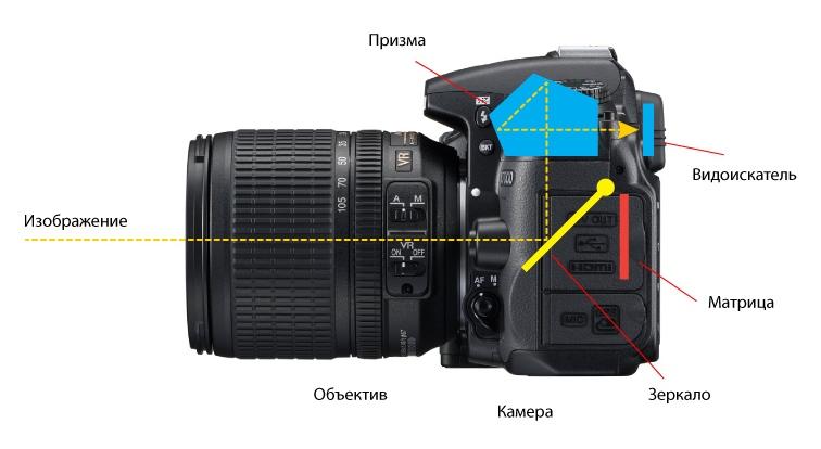как куда надо смотреть в фотоаппарат игра, наши
