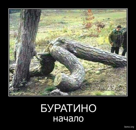 очень смешные фото смешные картинки