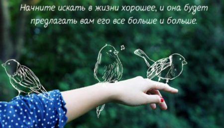 красивые цитаты о жизни со смыслом с надписями и фото