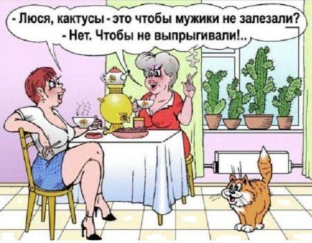 анекдоты от андрея норкина читать бесплатно