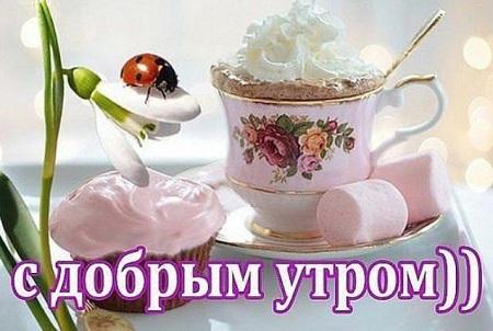 картинки с добрым утром и хорошего дня прикольные девушке бесплатно
