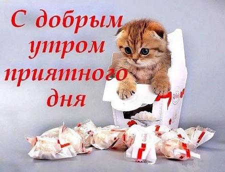 картинки спасибо за добрые пожелания тебе желаю всего доброго