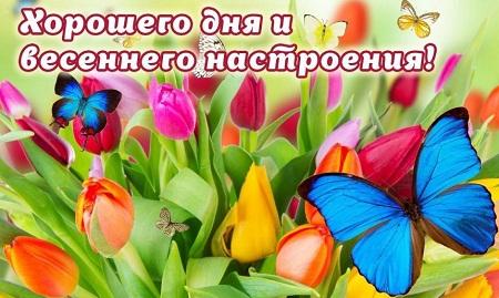 красивые пожелания доброго утра и хорошего дня в стихах мужчине