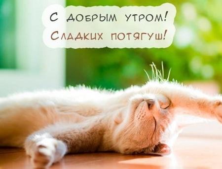 позитивные открытки для поднятия настроения скачать бесплатно