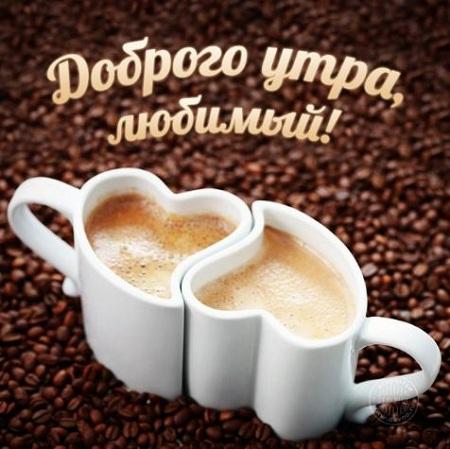 всем доброе утро и хорошего дня картинки прикольные