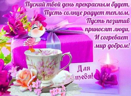 картинки доброго утра хорошего дня и отличного настроения картинки