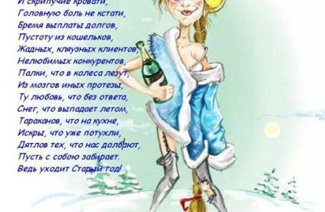 Прикольные стихи на Новый год