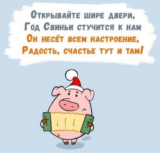смешные стихи про новый год свиньи