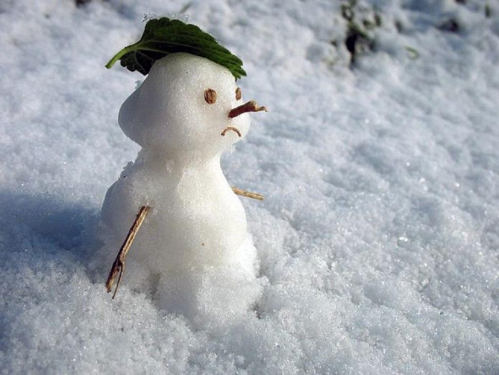 беспокоит что картинки красивые прикольные конец зимы процессе сборки