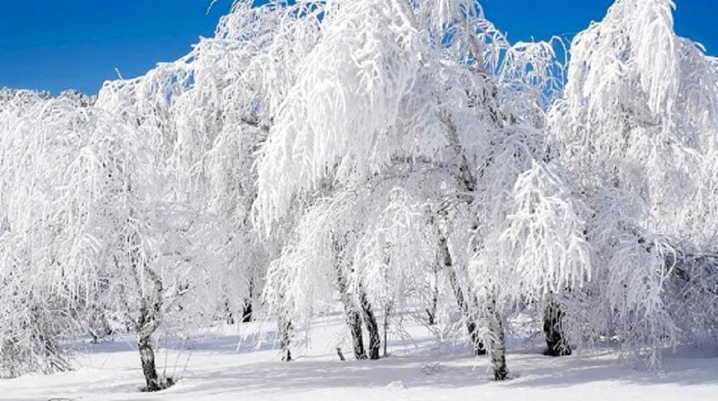 картинки зимние пейзажи красивые на рабочий стол автомобиль бизнес-класса можно