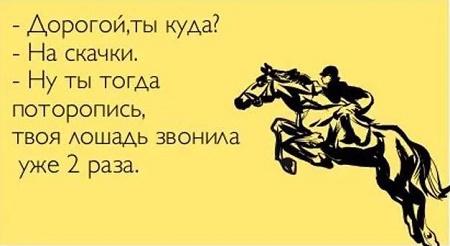 анекдот про лошадь,