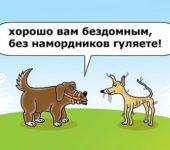 анекдоты про собак свежие и угарные