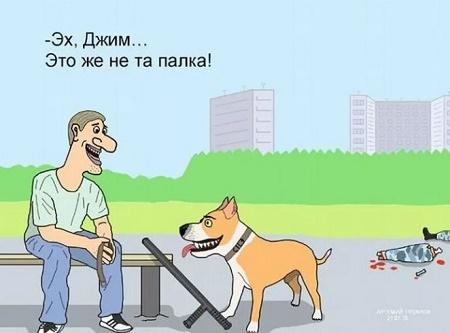 анекдот про собаку прикольный