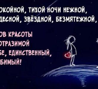 пожелания спокойной ночи девушке РФ