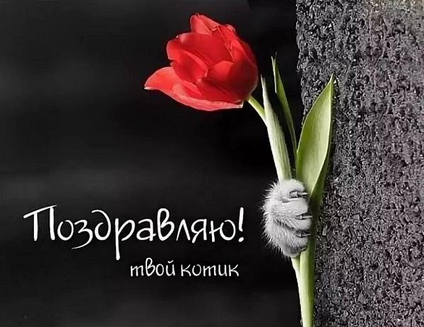 Короткие поздравление с 8 марта девушке р