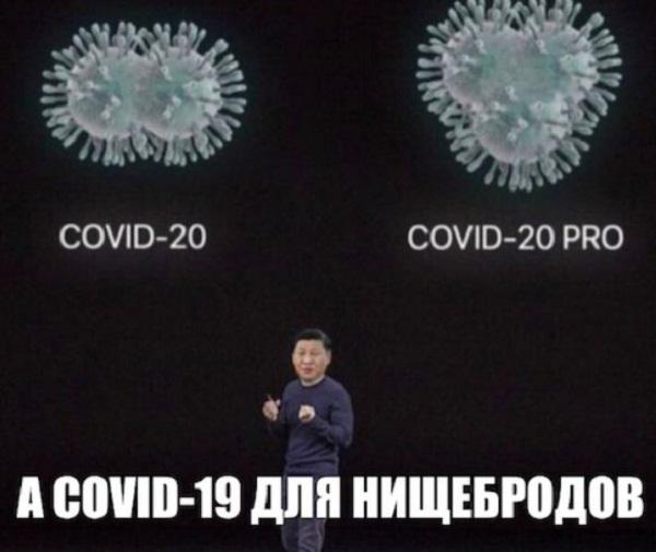 коронавирус картинки смешные с надписями (5)