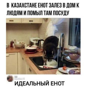 самая смешная история из жизни РФ