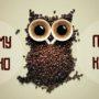 Вред кофе на организм человека — исследования