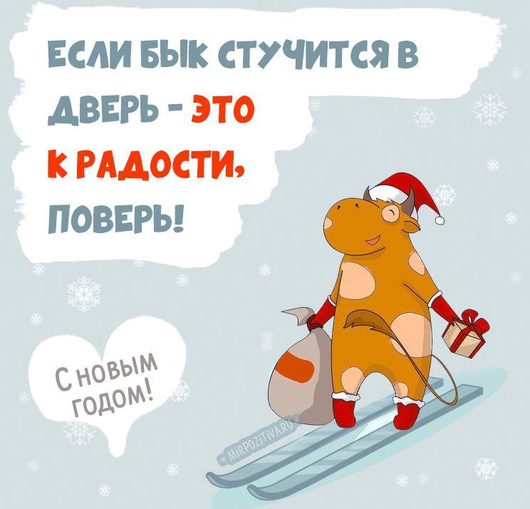 поздравления с новым годом б ко р (3)