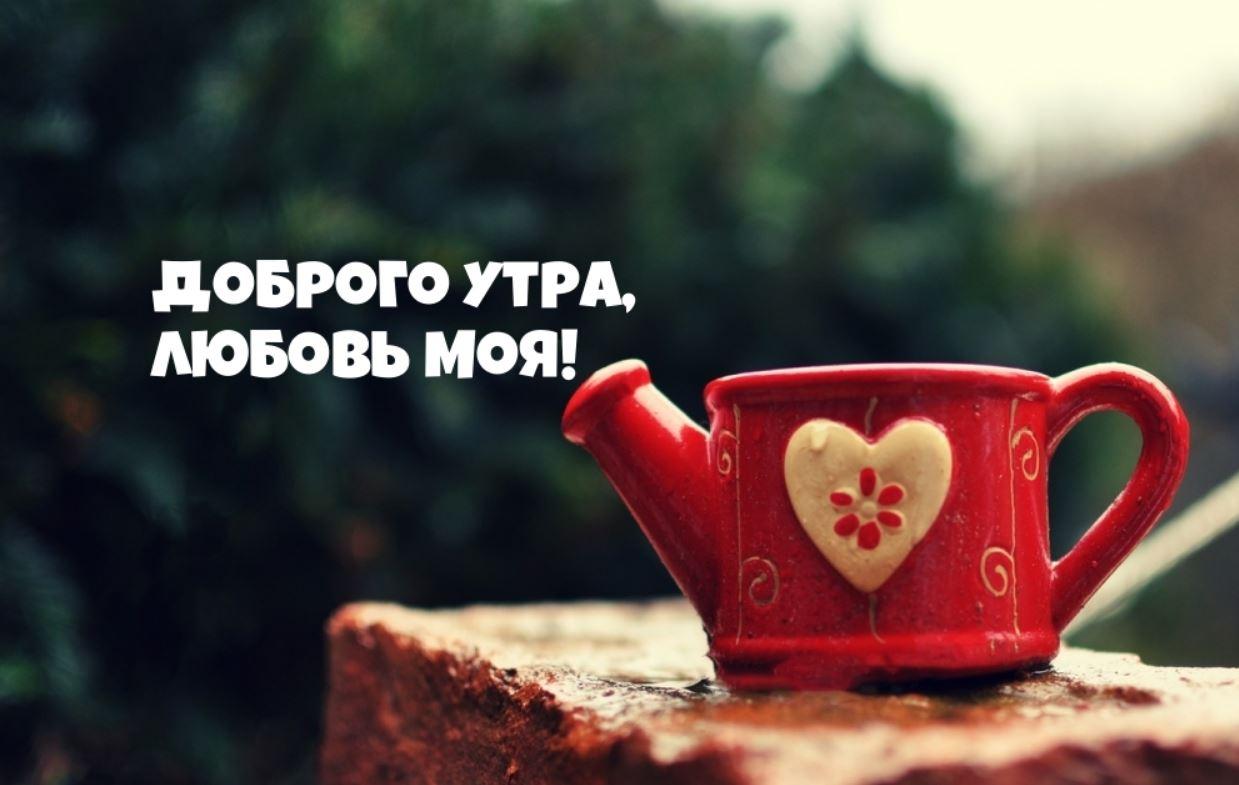 доброе утро картинки (2)