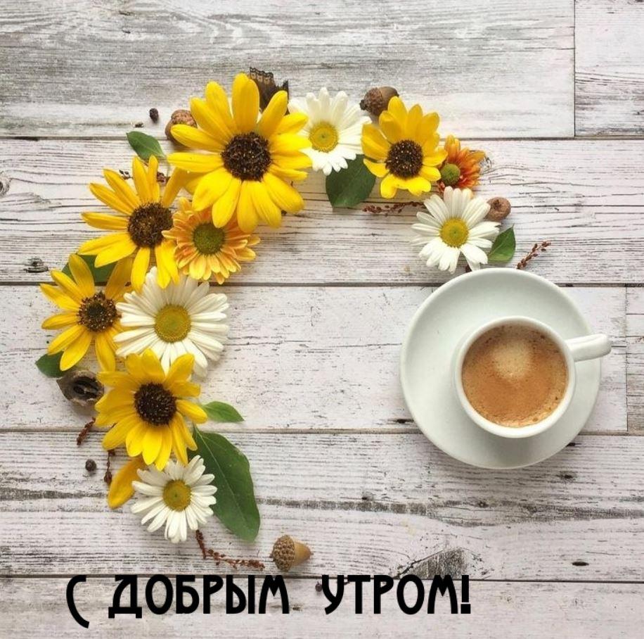 доброе утро картинки (3)