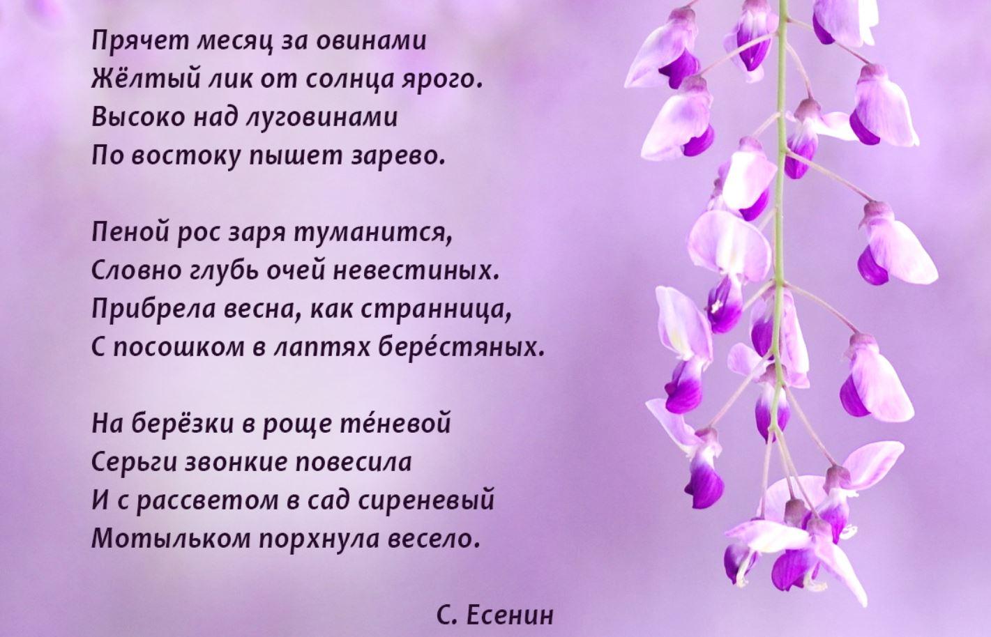 стихи о весне (2)