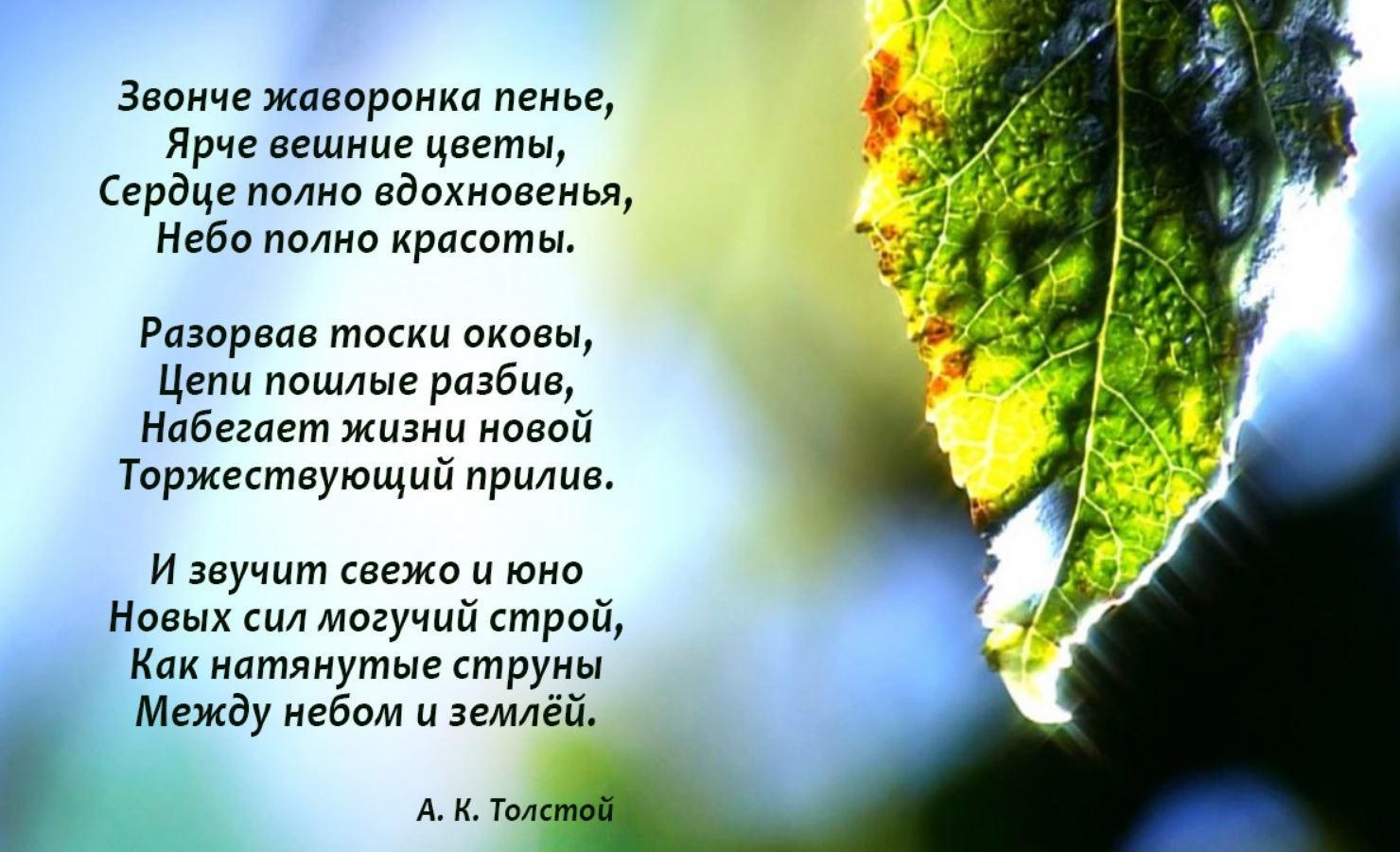 стихи о весне (3)