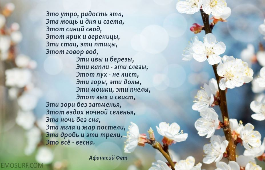Стихи про весну (3)