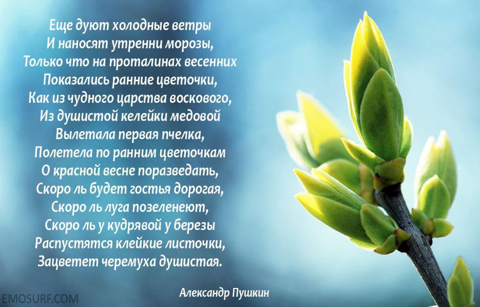 Стихи про весну (4)